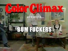 CC - Bum Fuckers