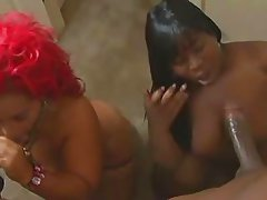 THE CHOCOLATE FACTORY #7(BBW LOVE TO SUCK DICK !!)